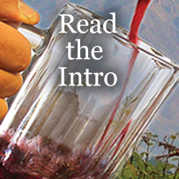 Introduction: A Beer Drinker's Guide To Knowing And Enjoying Fine Wine